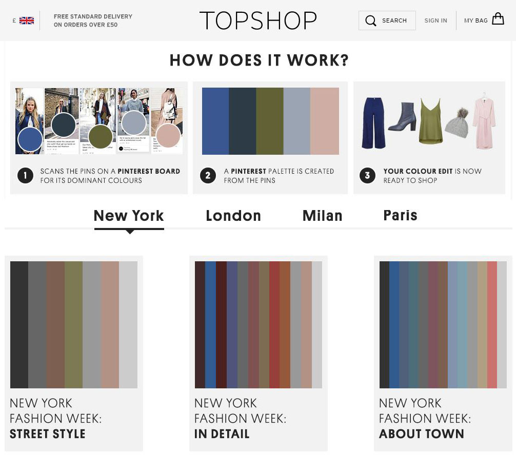 Topshop Pinterest Palettes screenshot