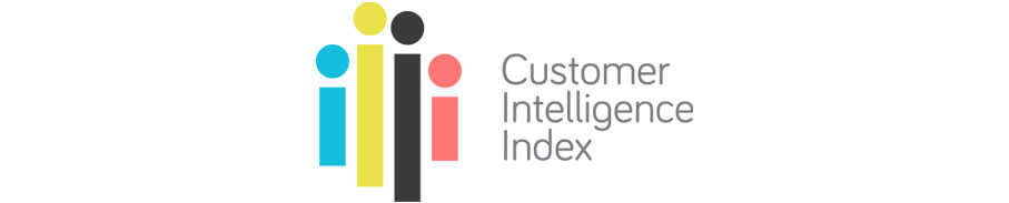 Leapfrogg Customer Intelligence Index